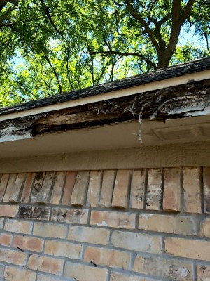 Before a Gutter Replacement