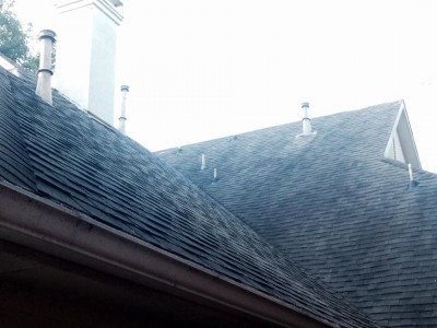 Leaking Roof 1