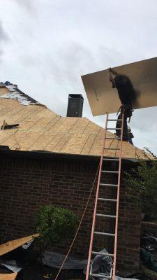 contractor installing roof