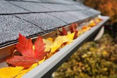 Gutters Fall Ready