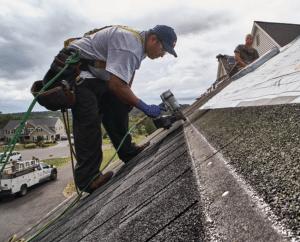 Kangaroo Contractor Accredited Business